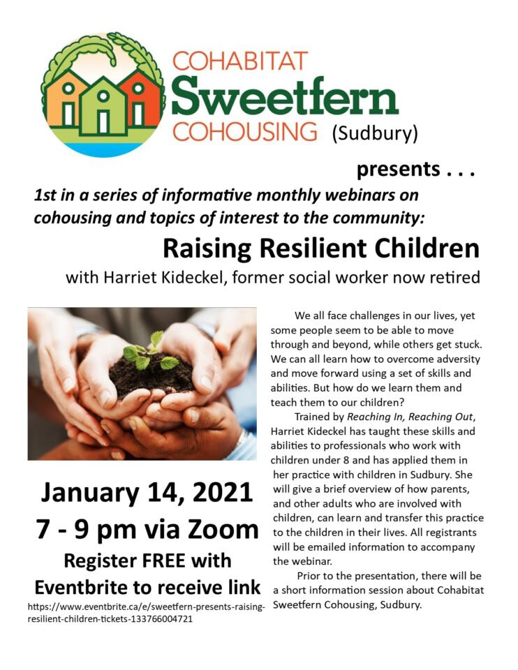 Raising Resilient Children Webinar Flyer